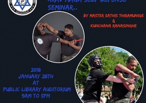 Full day Krav Maga Self Defense Seminar